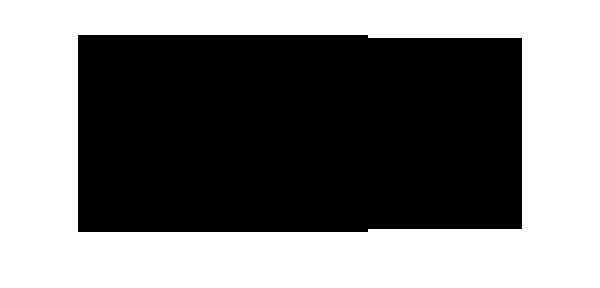 Air Warriors Logo